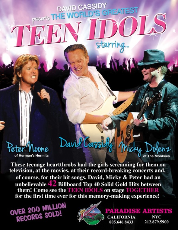 teen idol tour
