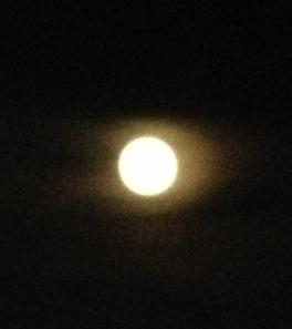 Reading PA moon