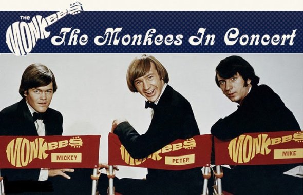 monkees in chair